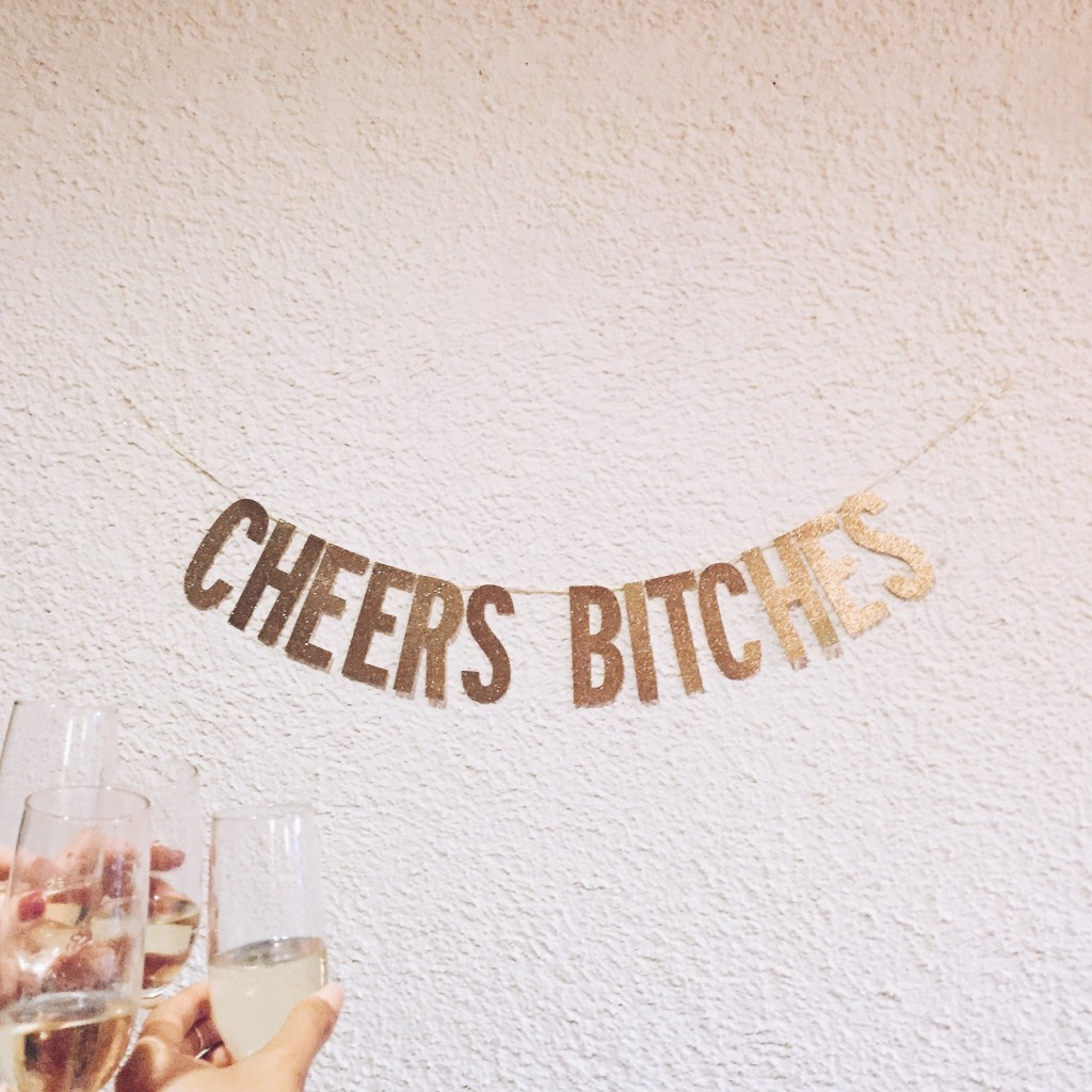 Cheers Bitches Banner for Bachelorette Party - elanaloo.com