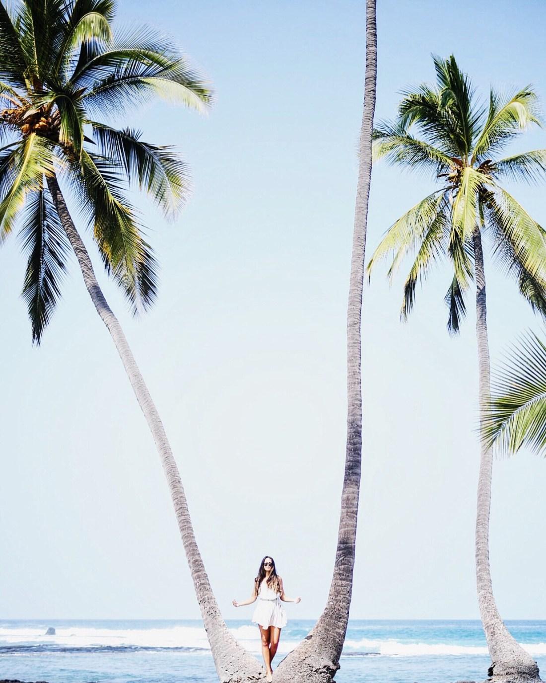 Where to Shop in Hawaii | Where to Shop on the Big Island of Hawaii | Best Things To Do In Hawaii | Ultimate Big Island Travel Guide | Hawaii Travel Guide | Kona Hawaii | Hilo Hawaii | Traveling to Hawaii | Things To Do In Hawaii | Vacationing to the Big Island of Hawaii | What To Do On The Big Island of Hawaii | via @elanaloo + elanaloo.com