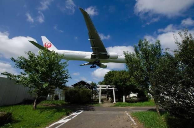 Lucha en Barajas y Narita: granjas
