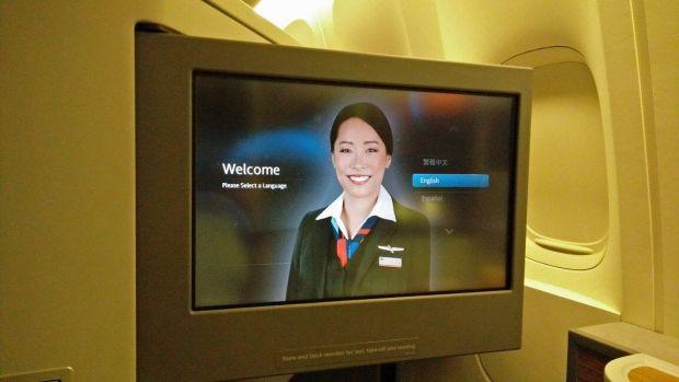 Pantallón del IFE en el avión. Es abatible para que pongas la inclinación que quieras.