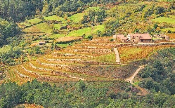 Fazenda Pradio