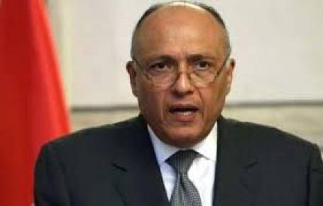 وزير الخارجية سامح شكري6