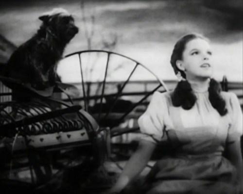 Judy Garland Over the Rainbow 2 - Judy_Garland_Over_the_Rainbow_2