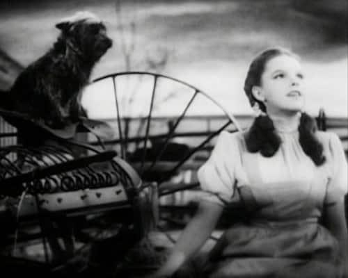 Judy Garland Over the Rainbow 21 - Over The Rainbow, la canción de los sueños