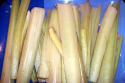 cardo4 - Cardo con bechamel y frutos secos. Proceso desde la huerta a la mesa