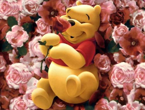 winiedepoo - Feliz día de San Valentín no materialista