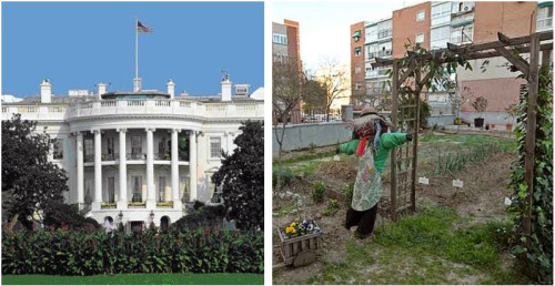 huertas urbanas casa blanca