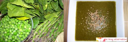 crema verde - Cremas de verduras de colores caseras