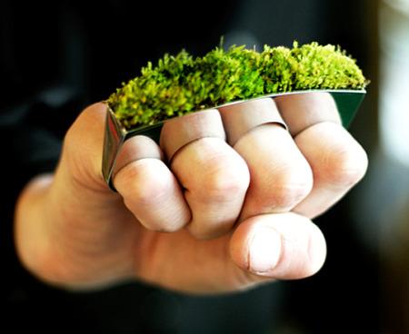 anillo verde1 - anillo-verde
