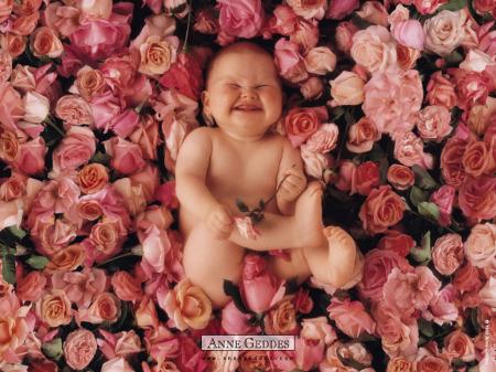 """bebe rosas - """"Los niños pequeños son los únicos seres a los que es preciso tratar de Vd"""" por Luis Paniagua"""