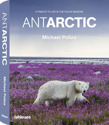 antarctic1 - ANTARCTIC: el homenaje del fotógrafo Michael Poliza a la vida en las regiones polares