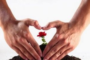 trabajoyamor - LEY DEL MENOR ESFUERZO: cuarta ley espiritual del éxito (6/10)