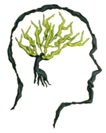 pensamiento verde3 - PENSAMIENTO VERDE: 5 reportajes en El País sobre la oportunidad de la crisis, el cerebro ecológico, arquitectura y casas sostenibles y huertos urbanos