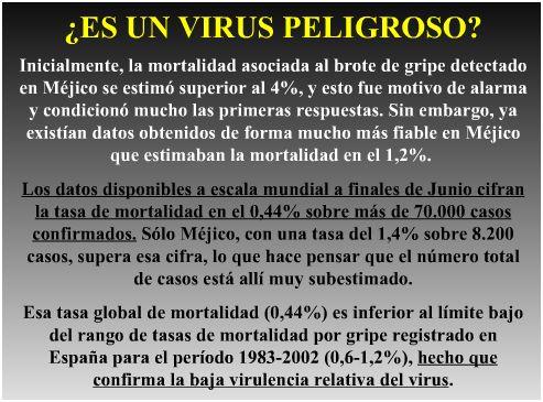 virus gripe 1 - Vídeo con una conferencia de 48' de los médicos Uriarte y Mora sobre las verdades escondidas en la gripe A y presentación de la microbióloga Pilar León