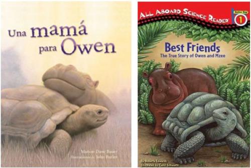 owen-hipopotamo