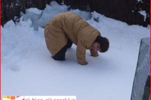 1nieve - ¡Qué bonita la nieve en invierno!, el mejor chiste