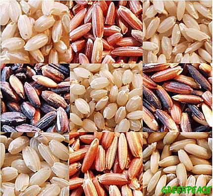 arroces - arroz integral