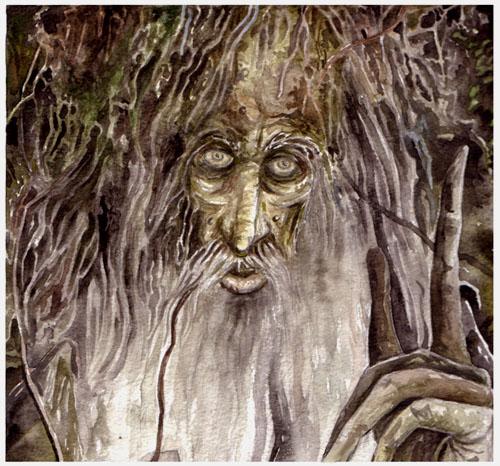 treebeard - treebeard