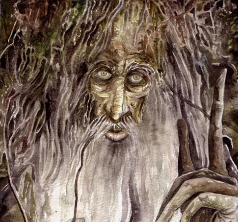 treebeard1 - treebeard