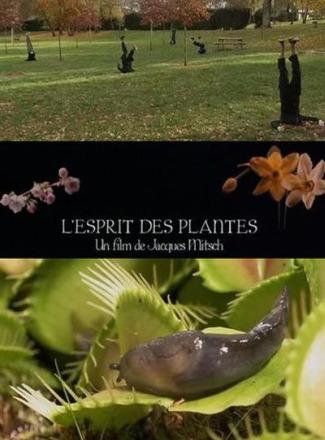 en la mente de las plantas