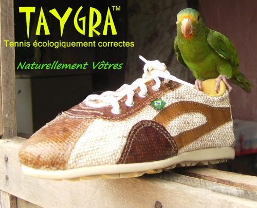 taygra