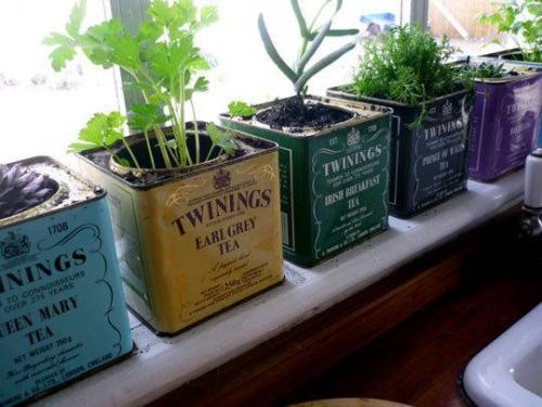 reciclar latas de té