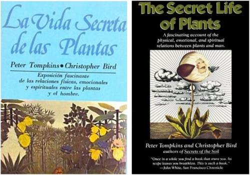 vida secreta - EN LA MENTE DE LAS PLANTAS: documental sobre la inteligencia del mundo vegetal