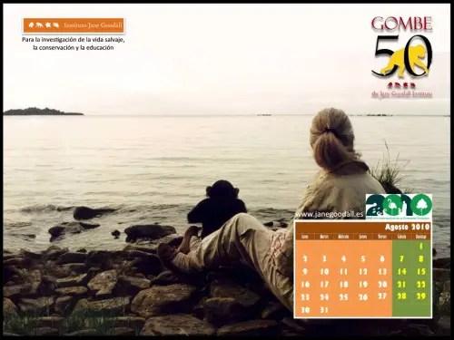 Calendario IJGE agosto 2010 1024 - Calendario IJGE agosto 2010 1024