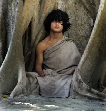 buddha 224254g - buddha_224254g