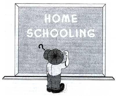homeschooling dudas - EDUCAR EN CASA - Homeschooling. Entrevistamos a la experta Laura Mascaró sobre todos los aspectos de esta opción educativa