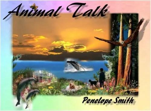 animales5 - animal communicator penelope smith
