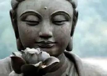 buda - Flores que curan el alma