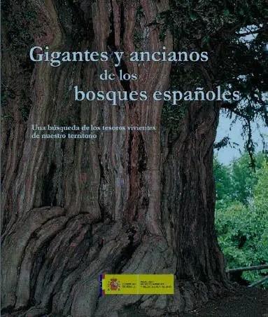 gigantes - gigantes y ancianos de los bosques españoles