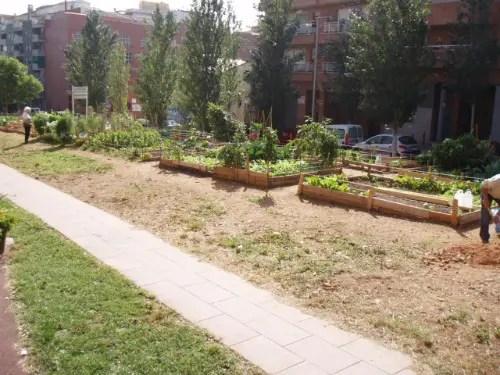 huertas3b - huertos comunitarios- mi balcón verde