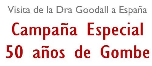 jane2 - Jane Goodall visita España en el 50 aniversario de Gombe