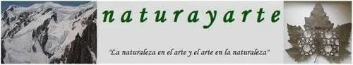 naturayarte - NATURAYARTE: la Naturaleza en el arte del calado de hojas