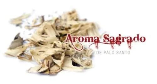 palosanto portadab1 - PALO SANTO: el aroma sagrado de la madera. Entrevistamos al experto Pedro Dols