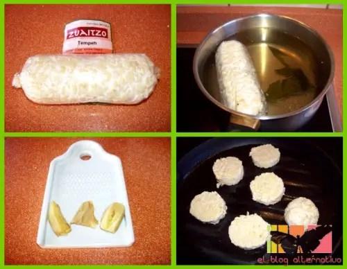 tempeh collage1 - tempeh con salsa teriyaki