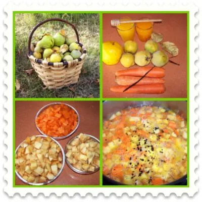 membrillo picnic - membrillo compota