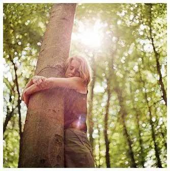 arbol - Cómo captar energía de los árboles: revista Mundo Nuevo 75