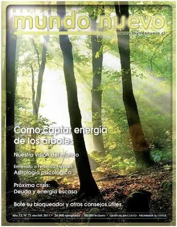 revista mundo nuevo enero 2011