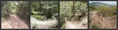 2collagecamino2 - Crónica de mi viaje a Perú: el Amazonas, el pulmón del planeta (4/6)