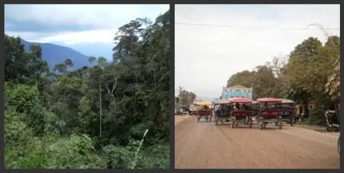 2collagetarapoto - Crónica de mi viaje a Perú: una nativa indígena más (3/6)