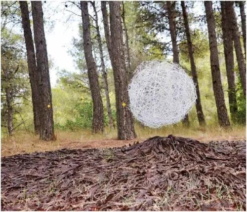 sergio ferrúa - Arte y naturaleza: la obra de Sergio Ferrúa
