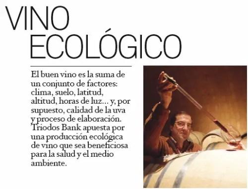 vino - Vino ecológico: un consumo que crece