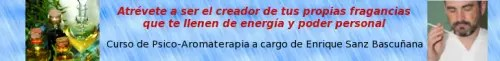 Psicoaromaterapia4 OK 500x61 - Empresas que han confiado en El Blog Alternativo en Junio 2011