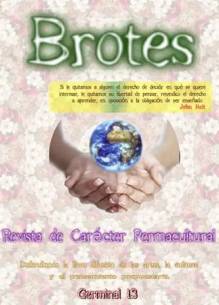 brotes 13