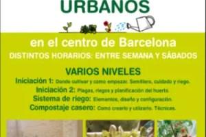 El Balcón Verde Talleres Huerto Urbano1 - Talleres de Huertos Urbanos de El Balcón Verde: de una afición a una vocación