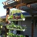 Jardín colgante de canalón - Mini jardín y huerta colgante en un canalón