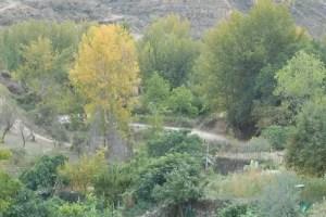 Otoño1 - Consejos de salud para el otoño